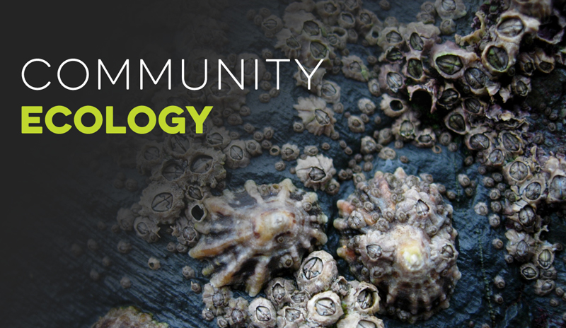 Community Ecology Banner for Ecology Models - Virtual Biology Lab