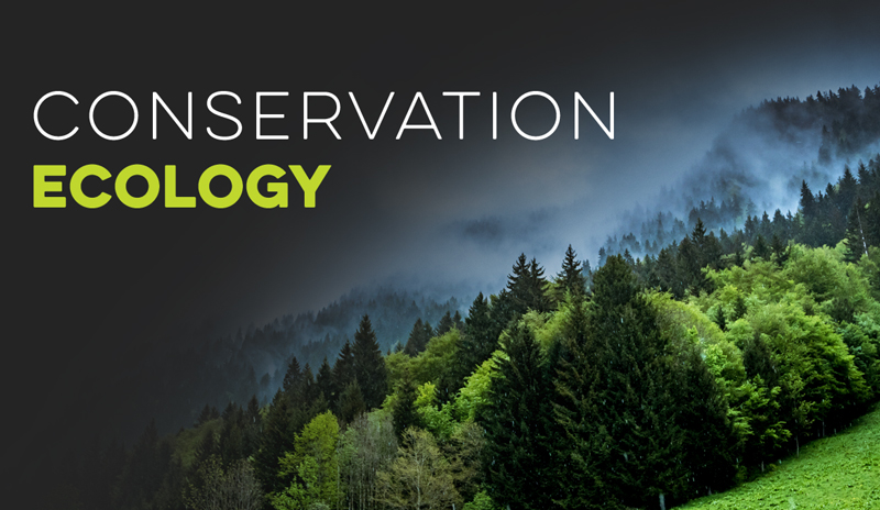 Conservation Ecology Banner for Ecology Models - Virtual Biology Lab
