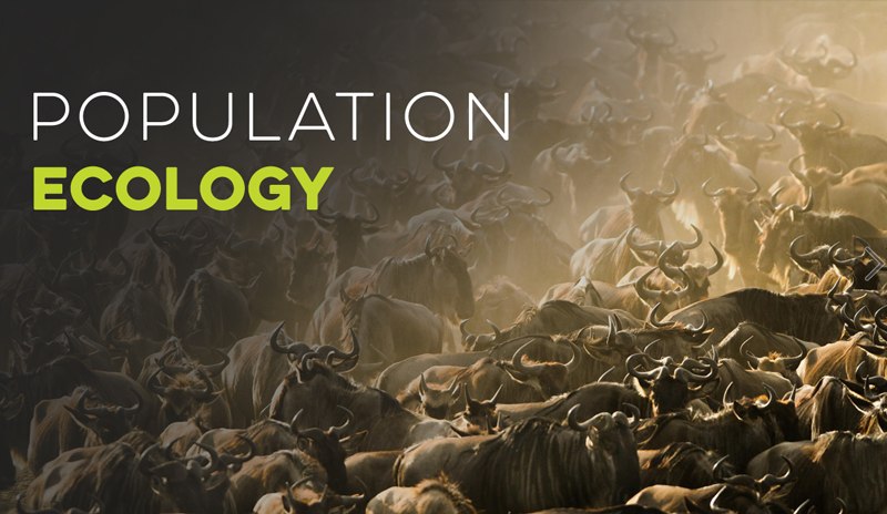 Population Ecology Banner for Ecology Models - Virtual Biology Lab