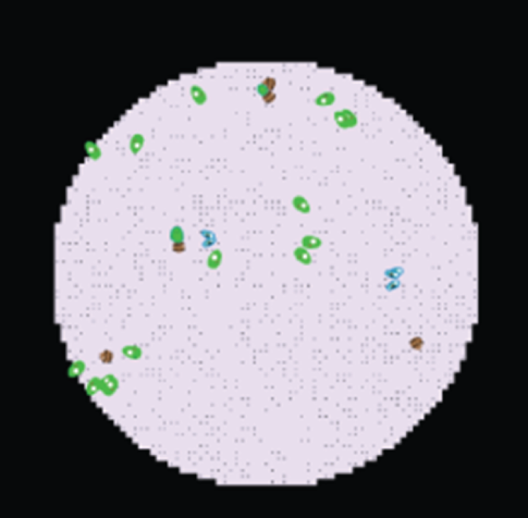 Screenshot of Microcosm Model - Virtual Biology Lab